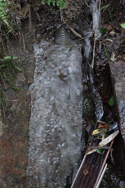 岩肌にへばり付く氷