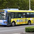 ちばシティバス いすゞエルガミオ