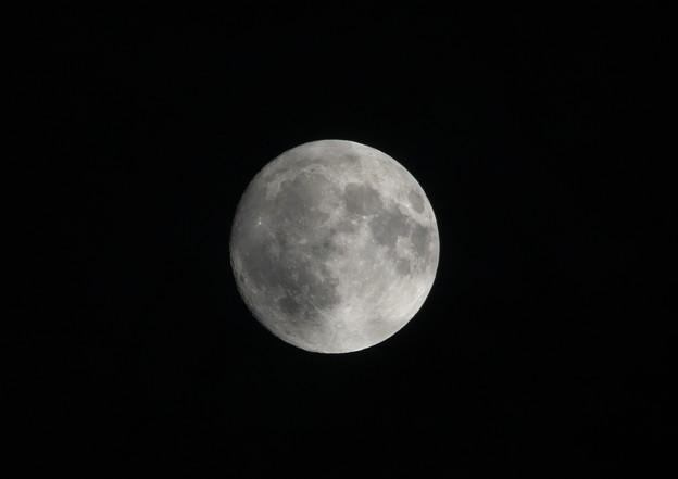 Photos: 今宵は十五夜