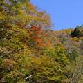 写真: 山は秋色に染まり