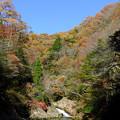 写真: 渓谷の紅葉(2)