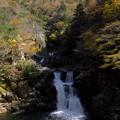 写真: 渓谷の紅葉(3)