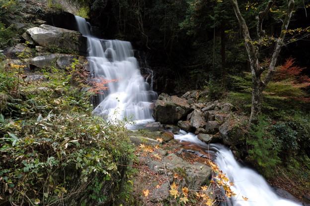 深山の滝の秋