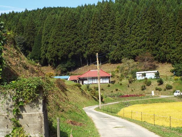 171009 (21)みね子の家