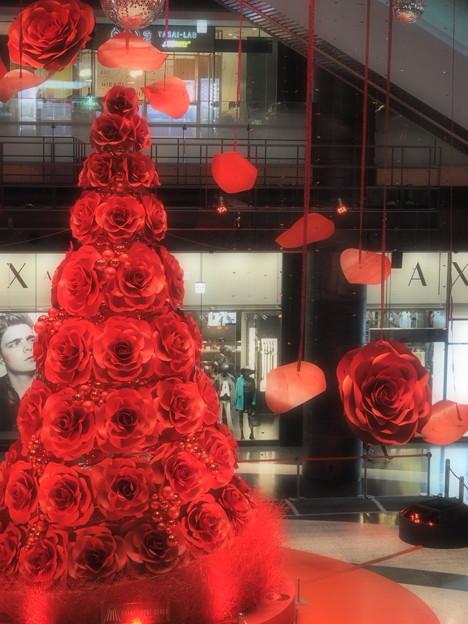 赤いクリスマスツリー