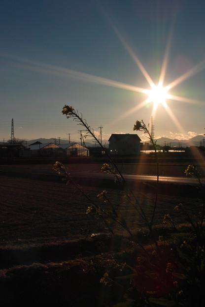 Photos: 冷たい風