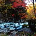 写真: 清流と紅葉~(^^♪