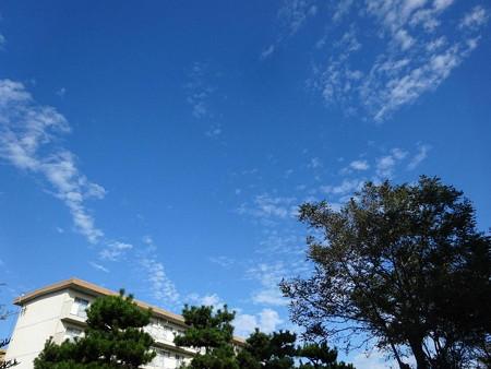 171027秋らしい空