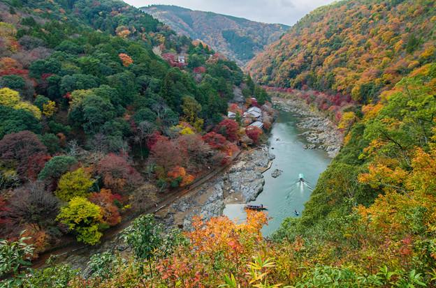 Autumn paints Arashiyama