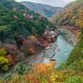 写真: Autumn paints Arashiyama