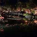 池のまわりの紅葉が美しい