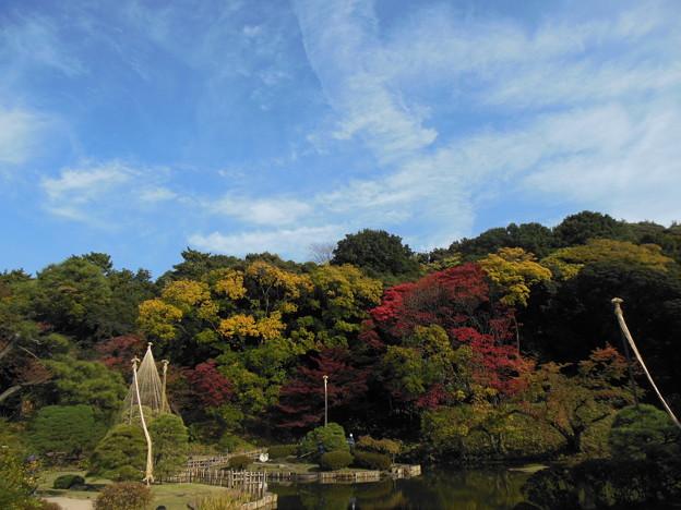 写真: '16紅葉狩 散歩日和♪