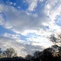 駒沢公園(2) <2015.1.16>