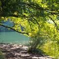 湖畔の秋は…