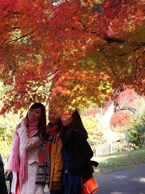 Photos: 中国からの訪問者も…