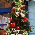 写真: Christmas ♪