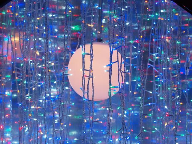 LED枝垂れと満月と