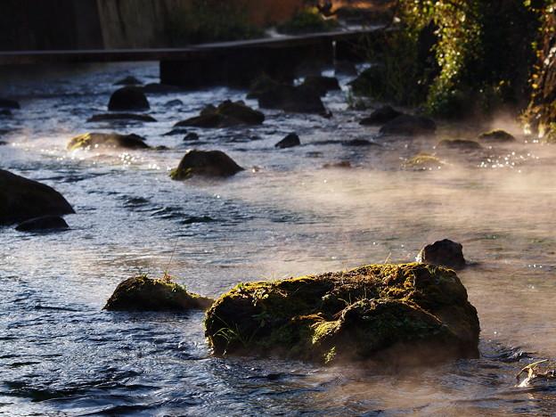 写真: 厳寒な朝のせせらぎ *b