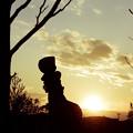 Photos: 赤ずきんの帰還