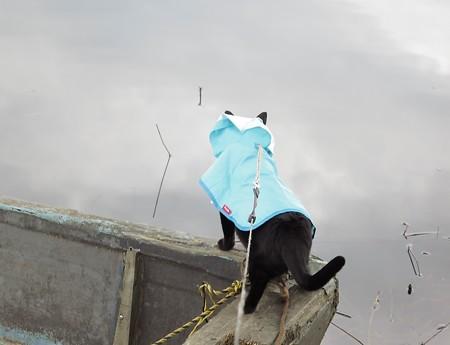 ボートの大冒険チャンプ1