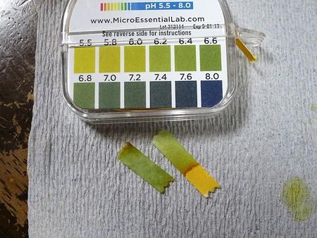 pH基準水