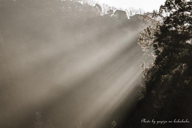 写真: 風景撮りの告白。#7