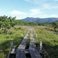 Photos: 沼原湿原