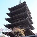 八坂の塔 H29,11,17