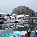 八尾川雪景色(1)H30,1,13