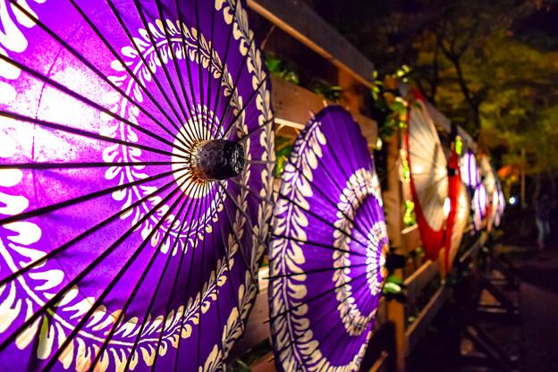 Photos: 和傘のライティング