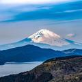 大観山からの眺望