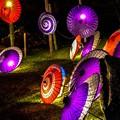 写真: 和傘の明かり