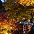 写真: Late autumn