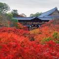 写真: 東福寺