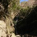 写真: 不動の滝2