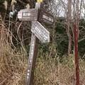 写真: 0114東お多福山