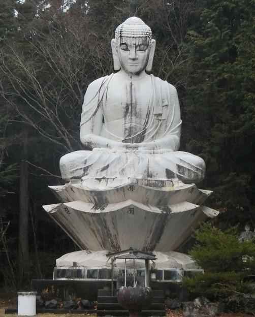 写真: 井川大仏2