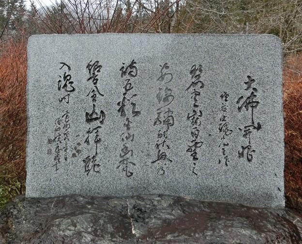 写真: 井川大仏4