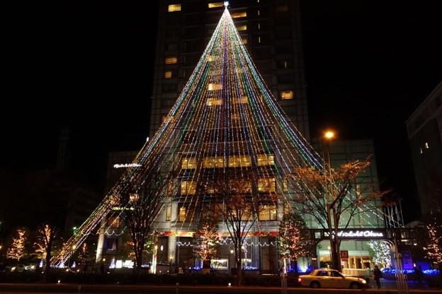 巨大なクリスマスツリー、京都2014!