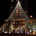 写真: 巨大なクリスマスツリー、京都2014!
