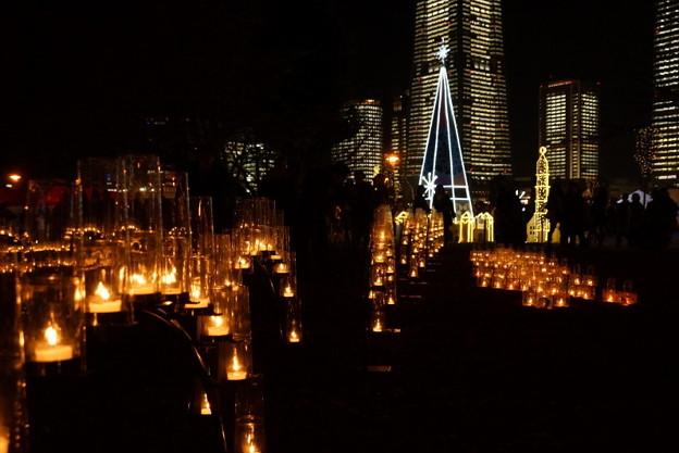 写真: 横浜タワーズミライト2014b