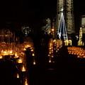 Photos: 横浜タワーズミライト2014b