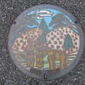 Photos: 埼玉県・吉見町(マンホールカード図案)