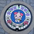 Photos: 埼玉県・ふじみ野市(マンホールカード図案)