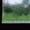 Photos: 肌寒い雨の朝