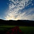 写真: 葛城山麓夕景