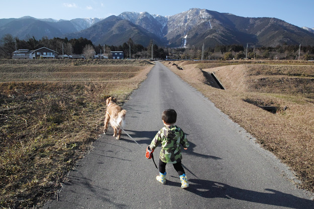 犬とお散歩のマーちゃん