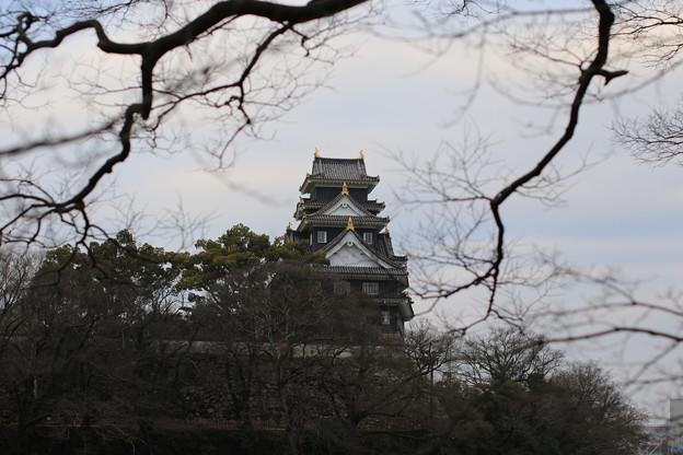 Photos: 御城