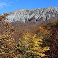 写真: 鳥取大山