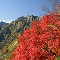 写真: 五竜岳